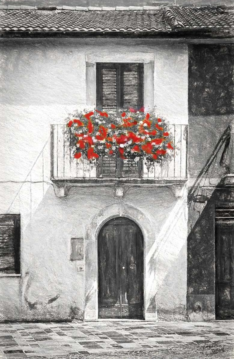 Geraniums-Charcoal-w-Color Web