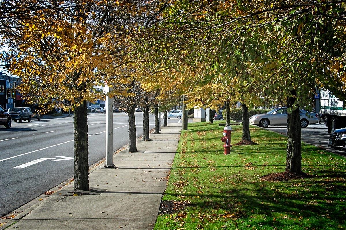 Richmond City Street